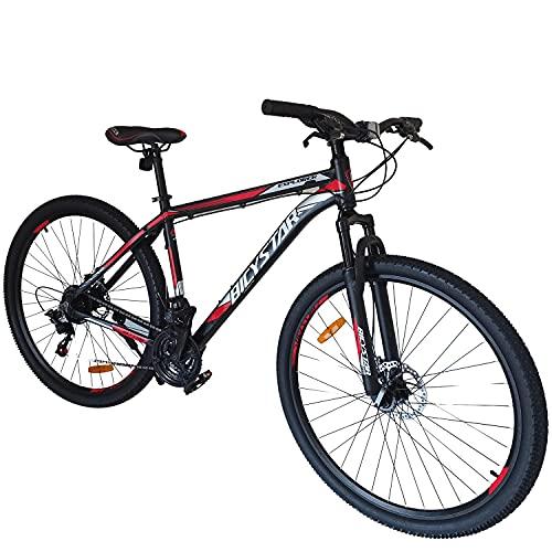 E-ROCK EX-6 29 Zoll Fahrrad MTB Bild