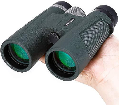 Fernglas für Erwachsene, 10x42 HD Kompaktes Fernglas für Vogelbeobachtung Jagd Wandern Reisen Sternbeobachtung Konzerte Sportliche (Grün)
