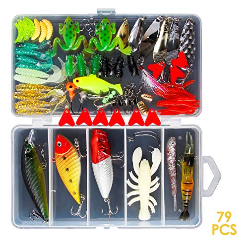 Chrider 79Pcs Fishing Lures Kit for Bass,Trout,Salmon; in Freshwater, Saltwater Including Spoon...