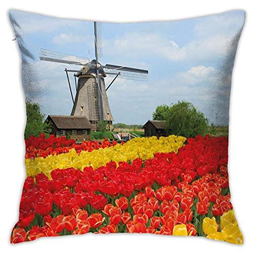 Fodera per cuscino decorativo, righe di tulipani colorati Letto da giardino rurale del Nord Europa Custodie per cuscini estivi pittoreschi, Fodere per cuscini quadrati per interni da esterno per divan