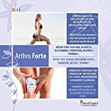 Zoom IMG-1 pack 2 sanaexpert arthro forte