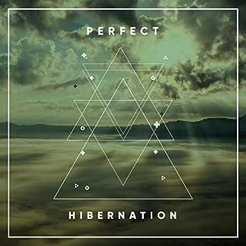 # Perfect Hibernation