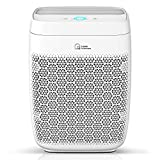 Zigma Air Purifier for Large Room up to 1580 ft2, True HEPA 5-in-1 Smart Air Purifiers for Home w/Voice Control for Dust, Pollen, Pet Hair, Smoke, Air Cleaner for Bedroom, Office, Kitchen Aerio-300