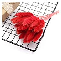 造花 25ピースのウェディングDIYを好む自然な乾燥花人工ブーケ&DIYウサギテールグラスブーセット (Color : Red)