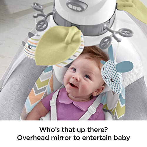51ekyrtMX5L The Best Fisher-Price Baby Swings for 2021 Review