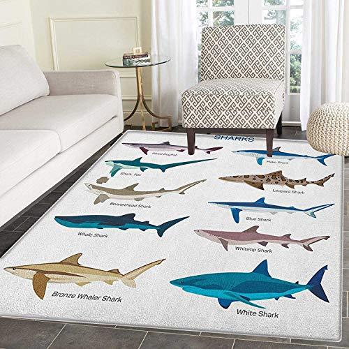 Yaoni Hai-Teppich Kid Carpet Collection Arten von Haien Bronze Whaler Piked Dogfish Whale Shark Maritime Design Home Decor für Carpe 4'x6