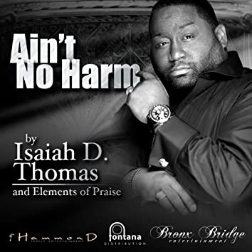 Ain't No Harm - Single
