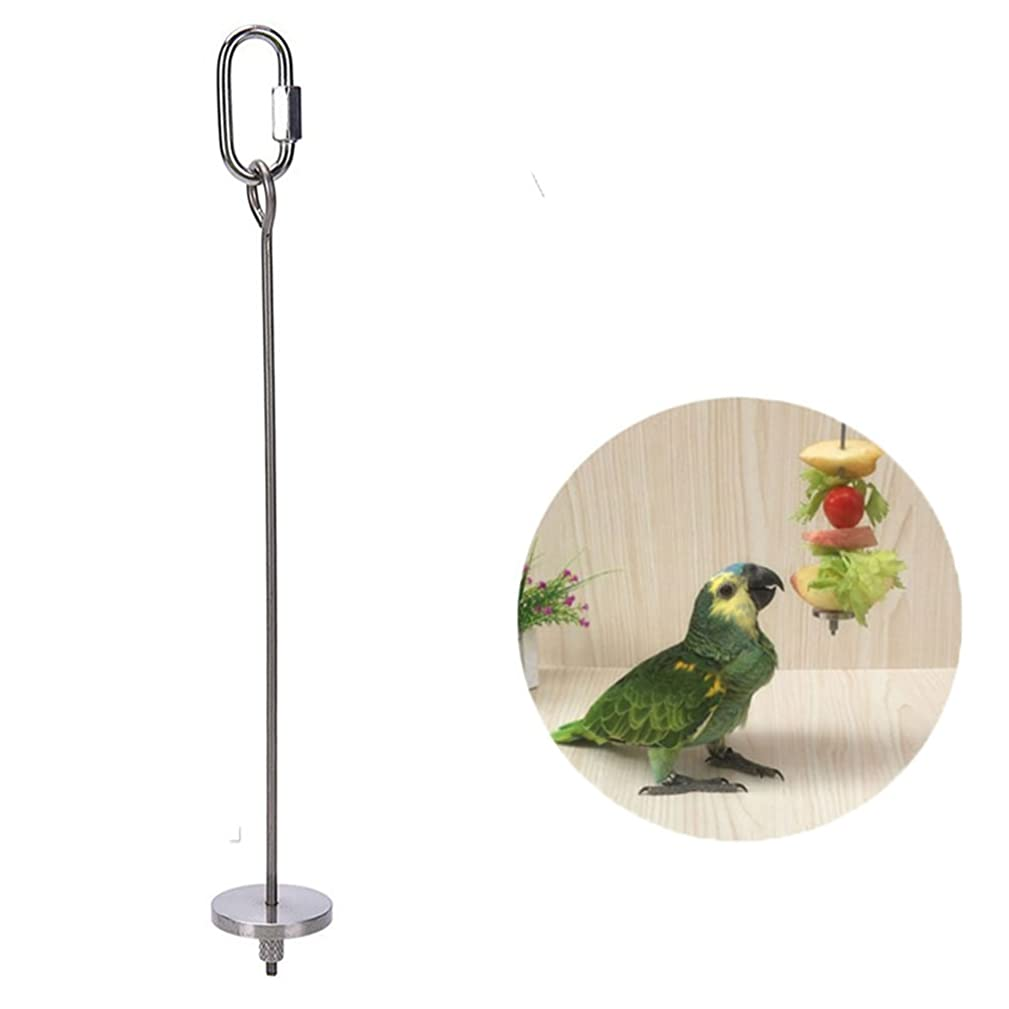 Bird Parrot Treat Fruit Vegetable Holder Skewer Foraging Toy Seed Feeder Tool for Parakeet Cockatiel Conure Cockatoo African Grey Macaw Chinchilla Guinea Pig Squirrel Cage (L)