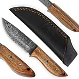 USQUARE UE-017, coltello da caccia in acciaio Damasco da 20,32 cm con fodero, coltello con...