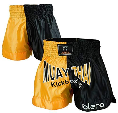 Evo Muay Thai Short De Combat MMA Kick Boxing Grappling Arts Martiaux Rouage UFC Hommes - Noir & doré, Small