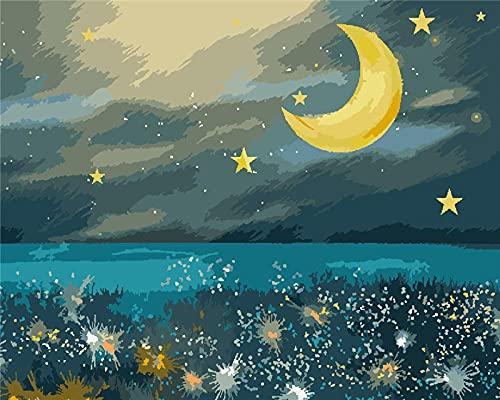BUFULAIZHAN Pintar por Numeros Adultos Niños Luna para Pintar por Numeros Equipo De Bricolaje Acrílica Al Óleo Pintura por Números En Lienzo con 3 Pinceles Y Pinturas 40X50Cm Framed