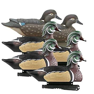 Avery Greenhead Gear Life-Size Duck Decoy,Wood Ducks,1/2 Dozen
