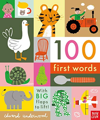 100 First Words: With BIG flaps to lift!