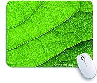 Mabby マウスパッド,green leaf macro background,ラップトップコンピュータPCオフィス用の滑り止めラバーベースマウスパッド、かわいいデザインデスクアクセサリー