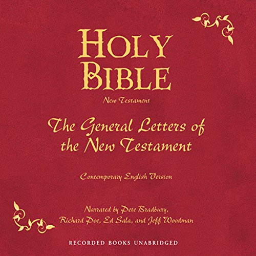 Holy Bible, Volume 29 audiobook cover art