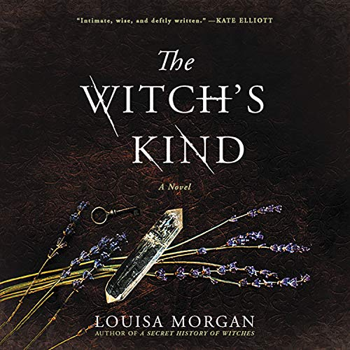 The Witch's Kind Audiobook By Louisa Morgan cover art