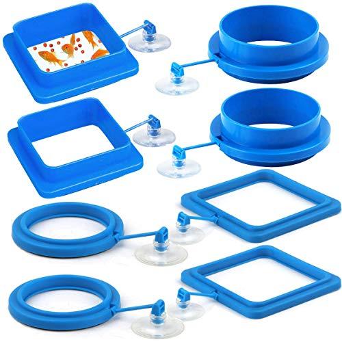 Tangger 8 PCS Fisch Fütterung Ring mit Saugnapf,Aquarium Fisch Tank Ring Kunststoff Futterstation Float Schwimmendes Futter Feeding Station für Goldfish und Andere Kleinere Fische (Runde und Platz)