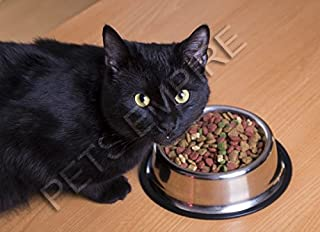 Pet Bowls for Smaller Dogs & Cats. Wipe Clean, Stainless Steel Non-Skid Bottom for Dogs, Puppies, Cats, Kittens, Rabbits &...