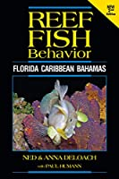 Reef Fish Behavior: Florida - Caribbean - Bahamas