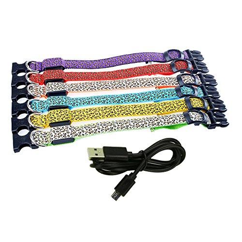 Domybest Tier LED Hundehalsband Pet Supplies Nacht Sicherheit Blinkende Glow Elektrische Halsbänder