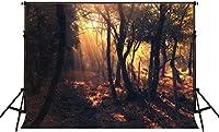 新しい2.1×1.5m森の背景ポートレート写真の背景自然な写真の背景