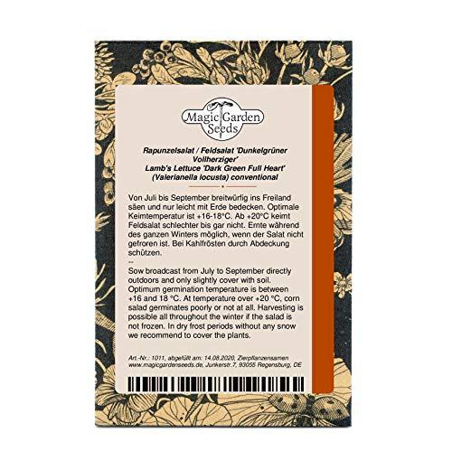 Rapunzelsalat Feldsalat 'Dunkelgrüner vollherziger' (Valerianella locusta) Vogerlsalat 2000 Samen