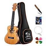 Donner Concert Solid Top Ukulele Mahogany DUC400 23 inch with Ukulele Set Strap Nylon String Tuner (Tuner with cr3032 3V Lithium Battery)