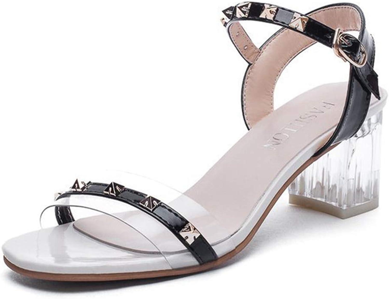 GIY Women's Clear Block Heel Sandals Open Toe Slingback Ankle Strap Chunky Heel Office Dress shoes