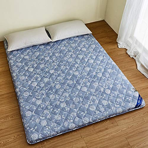 Japanese Floor Mattress, Thick Futon Mattress, Tatami Sleeping Mat Foldable Dorm Mattress Mattress for Kids Dormitory Baby Bed C 120x190cm (47x75inch)