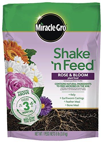 Miracle-Gro Shake 'N Feed Rose & Bloom Plant Food 8 lbs