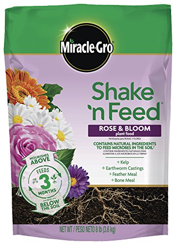 Miracle-Gro Shake 'N Feed Rose & Bloom Plant Food 8 lbs