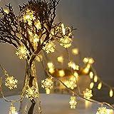 EFFE 雪型 LEDイルミネーションライト フェアリーライト 電飾led 3M 20LED 電池式ストリングライト 点滅ライト 室内 室外 コン 防水 クリスマスツリー飾り クリスマス ハロウィン パーティー 正月 誕生日 結婚式 庭 広場 家装飾や、庭、ホテル、バー - ウォームホワイト(暖白色)