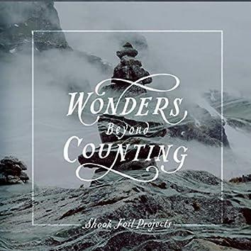 Wonders Beyond Counting