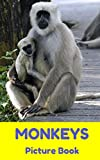 MONKEYS : Picture Book (Monkey Book, Monkey Book for Kids, Monkey Business, Apes and Monkeys) (English Edition)