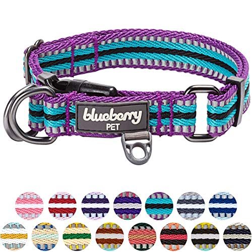 "Blueberry Pet 15 Colors 3M Reflective Multi-Colored Stripe Adjustable Dog Collar, Violet and Celeste, Small, Neck 12""-16"""