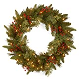 National Tree Company 'Feel Real' Pre-lit Artificial Christmas Wreath | Flocked with Mixed Decorations and Pre-strung LED Lights | Classical Collection - 24 Inch