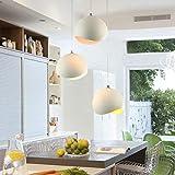 BWLZSP Moderno Minimalista LED Personalidad Sola Cabeza lámparas nórdicas Comedor Dormitorio Pasillo Bar lámpara TA0127PY20