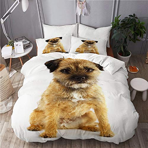 Kgblfd Microfiber Lightweight Duvet Cover Sets,young and active english border terrier,Decorative 3D Print Bedding Set 230x220 with 2 Pillowcase 50x80,King