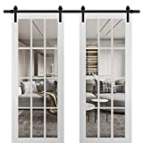 Sturdy Double Barn Door 72 x 96 inches with Clear Glass 12 Lites | Felicia 3355 Matte White | Top Mount 13FT Rail Hangers Heavy Set | Solid Panel Interior Doors