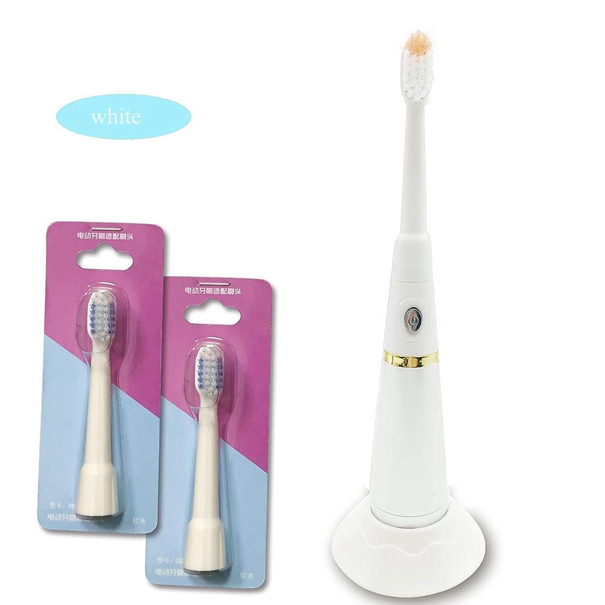反対した食べる氏電動歯ブラシ充電式大人、自動タイマーと交換ブラシヘッドバッテリー付き防水電子歯ブラシ,White