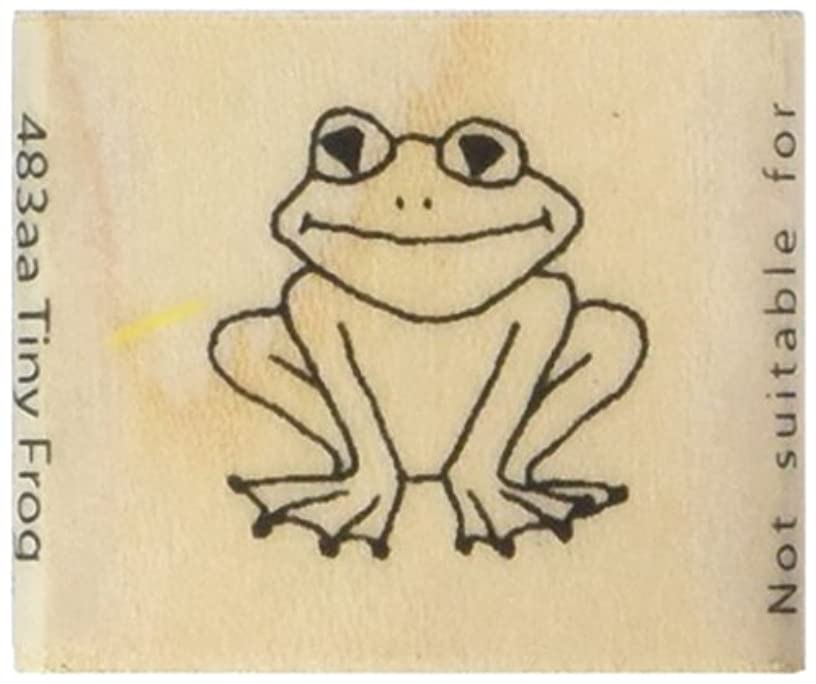 Art Stamps Tiny Frog Stamp