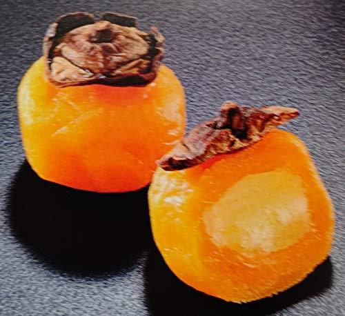 冷凍和菓子 甘柿餅 カスタード 24個 業務用 冷凍