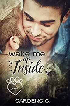 Wake Me Up Inside (Mates Collection Book 1) by [Cardeno C.]