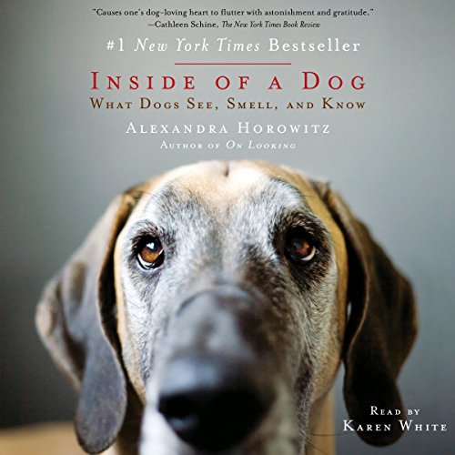 Inside of a Dog audiobook cover art