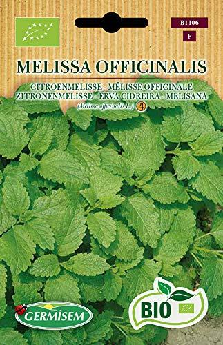 Germisem Biologico Melissa Officinalis Semi di Melissa 1 g