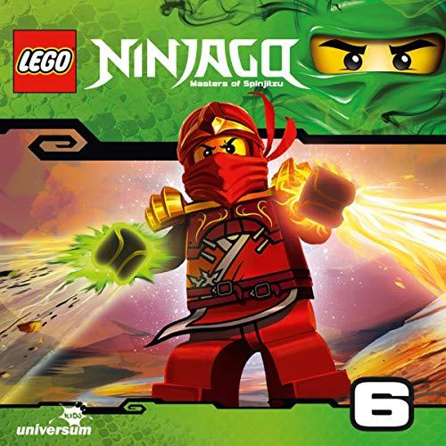 Die falschen Ninja Titelbild