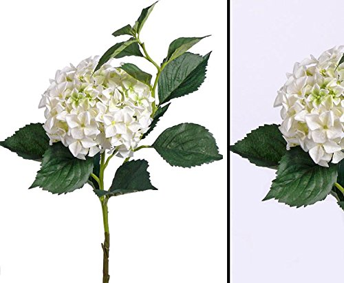 Weiße Hortensie Kunstblume, mit 105cm, Blütenkrone Durch. 25cm - Kunstpflanze Kunstbaum künstliche Bäume Kunstbäume Gummibaum Kunstoffpflanzen Dekopflanzen Textilpflanzen Textilbäume Pflanzen aus Textil Kunststoffpflanzen Plastikpflanze Kunstpflanzenbaum Kunstblumen Deko Blumen --> großes Kunstpflanzen Sortiment