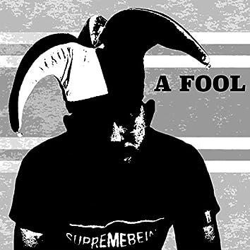 A Fool