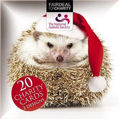 Caja de tarjeta navideñas - feliz termopila y todo está callado - 20 tarjetas de beneficencia, 10 cada diseños 2, vendido en apoyo de la Sociedad autistas Nacional