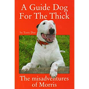 A Guide Dog for the Thick:Eventmanager